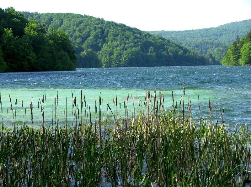 Прощанское озеро