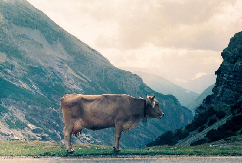 Италия: перевал Пассо делло Стельвио